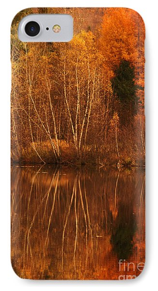 Restes D'automne Phone Case by Aimelle