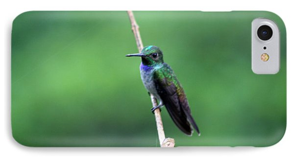 Resting Phone Case by Bob Hislop