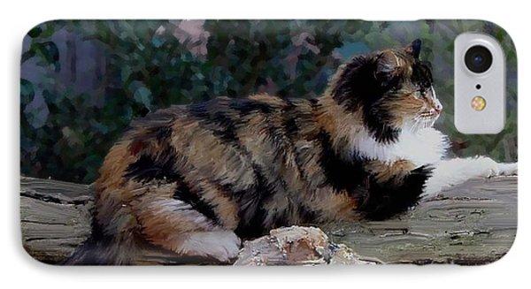 Resting Calico Cat IPhone Case
