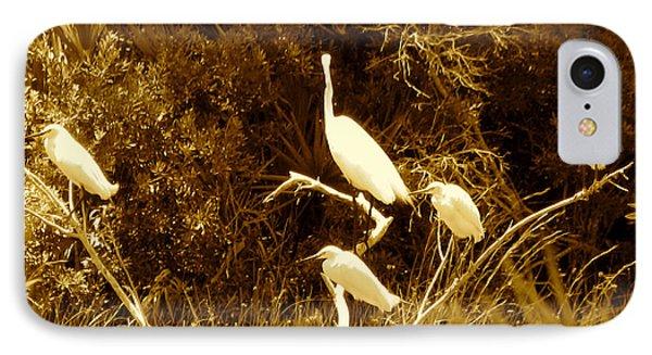 Resting Flock Sepia IPhone Case by Anita Lewis