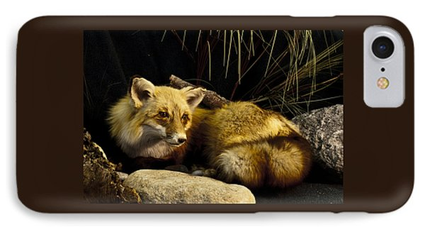 Resting Fox IPhone Case