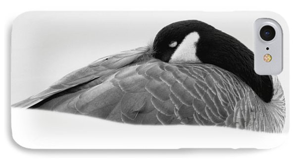 IPhone Case featuring the photograph Resting Goose In Bw by Anita Oakley