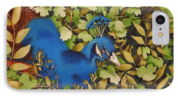 Resting Peacock IPhone Case by Katherine Young-Beck