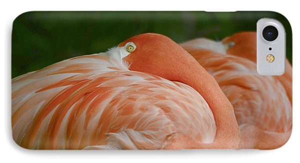 IPhone Case featuring the photograph Resting Time by Wanda Krack