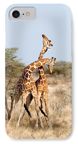 Reticulated Giraffes Giraffa IPhone Case by Panoramic Images