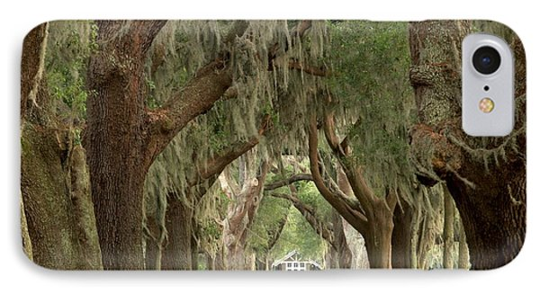 Retreat Avenue Of The Oaks IPhone Case by Adam Jewell
