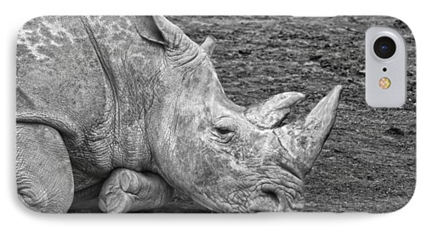 Rhinoceros IPhone Case by Nancy Aurand-Humpf