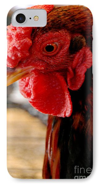 Rhode Island Red IPhone Case