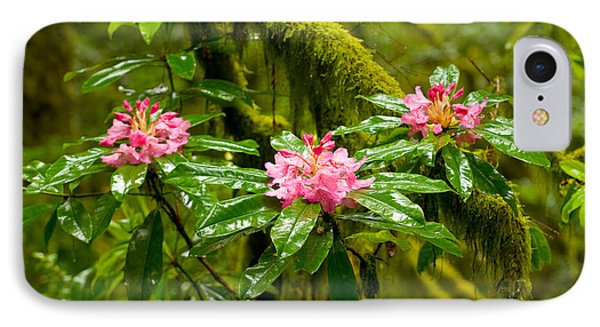 Rhododendron Flowers In A Forest IPhone Case by Panoramic Images