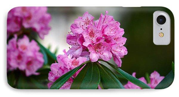 Rhododendron IPhone Case by Jouko Lehto