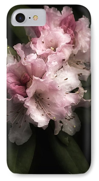 Rhododendron Study IPhone Case by Richard Cummings
