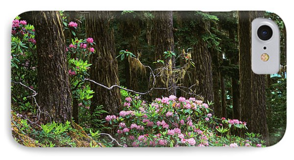 Rhododendrons And Trees, Washington IPhone Case by Randy Green