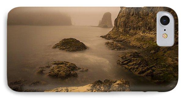 Rialto Beach Rocks IPhone Case