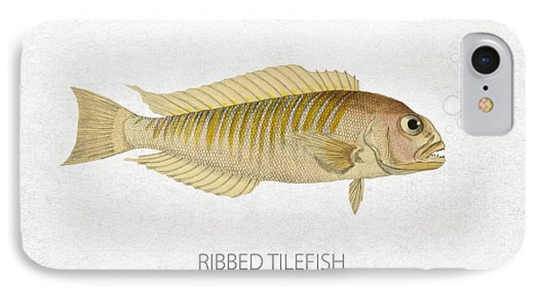 Ribbed Tilefish IPhone Case by Aged Pixel