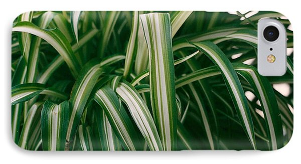 Ribbon Grass IPhone Case