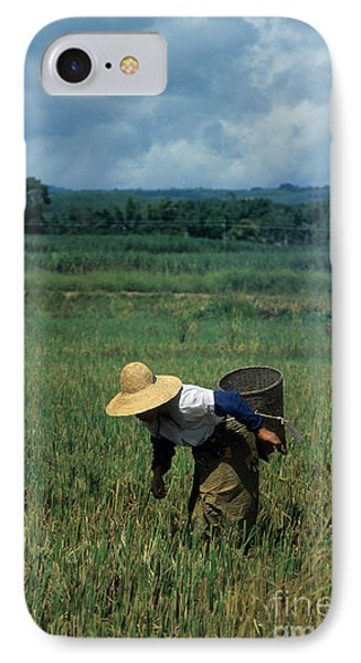 Rice Harvest In Southern China IPhone Case by James Brunker