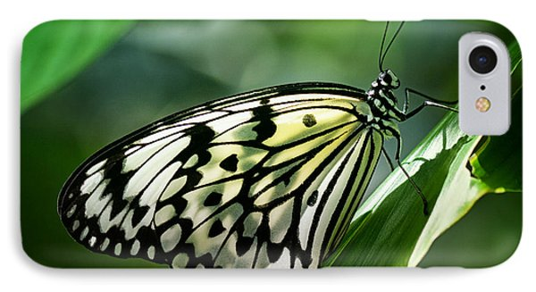 IPhone Case featuring the photograph Rice Paper Butterfly by Zoe Ferrie
