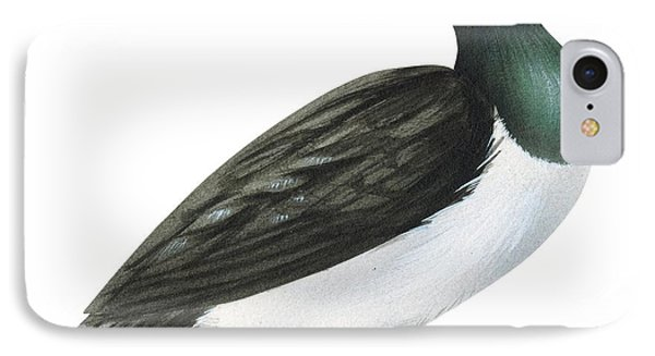 Ring-necked Duck  Phone Case by Anonymous