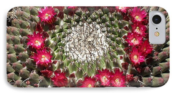 Ring Of Red Cactus Flowers IPhone Case