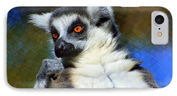 Ring-tailed Lemur IPhone Case by Lisa L Silva