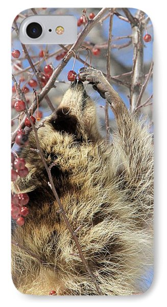 Ripe For The Picking IPhone Case by Doris Potter