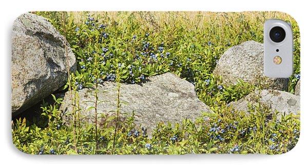 Ripe Maine Low Bush Wild Blueberries Phone Case by Keith Webber Jr