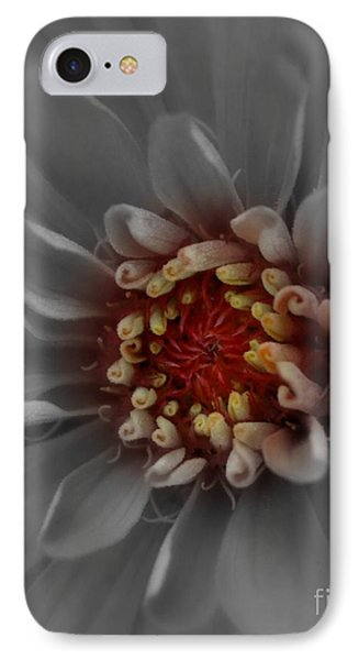 IPhone Case featuring the photograph Rise And Shine by Geri Glavis