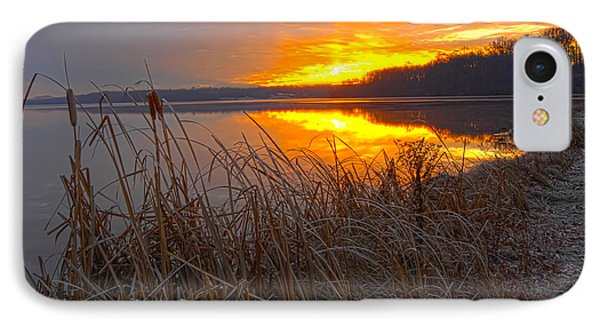 IPhone Case featuring the photograph Rising Sunlights Up Shore Line Of Cattails by Randall Branham