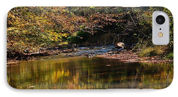 River In Autumn IPhone Case by Lisa L Silva