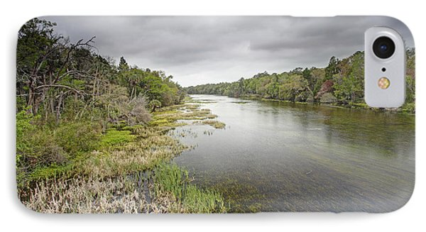 River In Ocala National Forest Florida IPhone Case