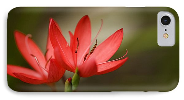 IPhone Case featuring the photograph River Lily by Liz  Alderdice