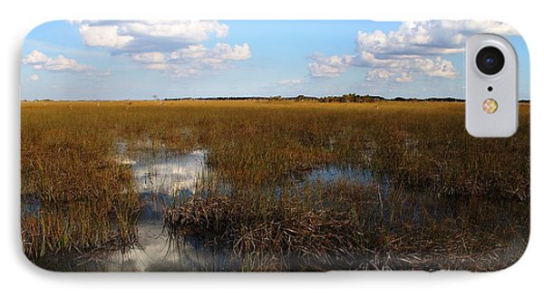 River Of Grass IPhone Case by Theresa Willingham