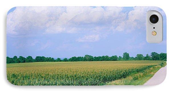 Road Along Corn Fields, Jo Daviess IPhone Case