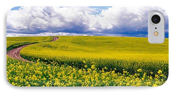 Road, Canola Field, Washington State IPhone Case