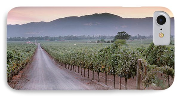 Road In A Vineyard, Napa Valley IPhone Case by Panoramic Images
