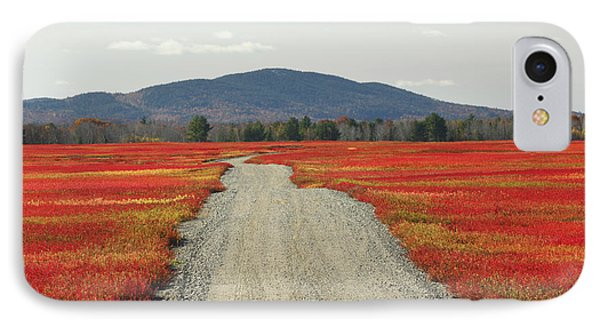 Road Through Autumn Blueberry Maine Phone Case by Scott Leslie