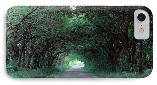 Road Through Trees Marion County IPhone Case by Panoramic Images