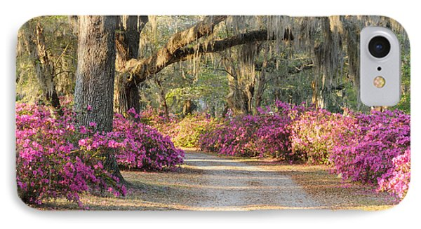 IPhone Case featuring the photograph Road With Live Oaks And Azaleas by Bradford Martin