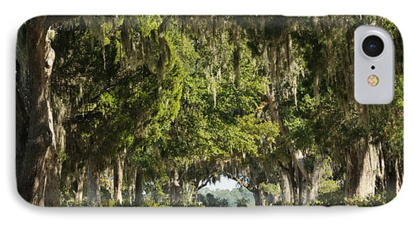 IPhone Case featuring the photograph Road With Live Oaks by Bradford Martin