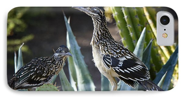 Roadrunners At Play  IPhone 7 Case by Saija  Lehtonen