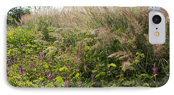 IPhone Case featuring the photograph Roadside Blooms by Jose Oquendo