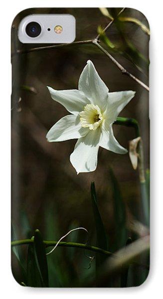 Roadside White Narcissus Phone Case by Rebecca Sherman