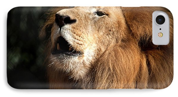 IPhone Case featuring the photograph Roar - African Lion by Meg Rousher