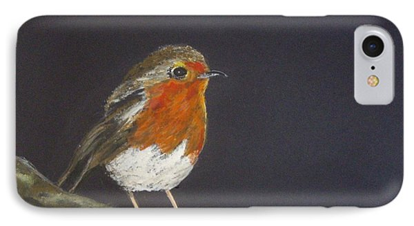 Robin IPhone Case by Carole Robins