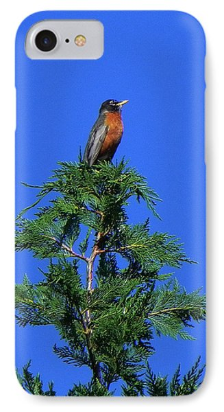 Robin Christmas Tree Topper IPhone Case by Bill Swartwout