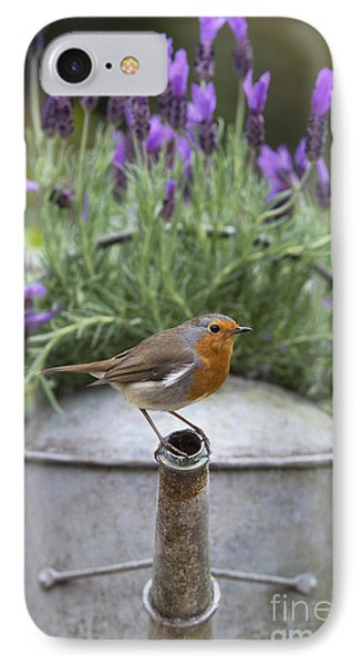 Robin IPhone Case by Tim Gainey