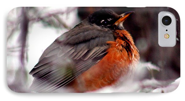 IPhone Case featuring the photograph Robins' Patience by Lesa Fine