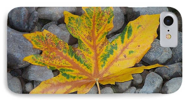 IPhone Case featuring the photograph Rock Creek Leaf by Chalet Roome-Rigdon
