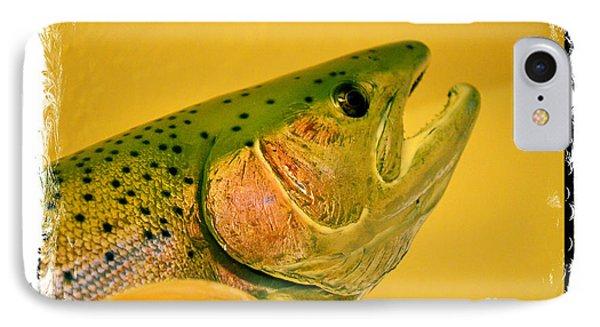 Rock Creek Rainbow IPhone Case by Lauren Leigh Hunter Fine Art Photography