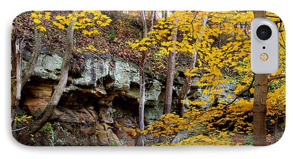 Rock Fall Gorge IPhone Case